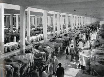 Führung über das Viehhofgelände